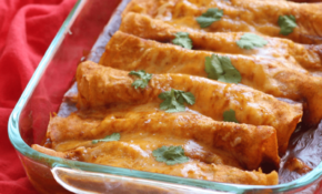 11 Minute Gluten Free Enchiladas – – Grain Free Recipes Dinner