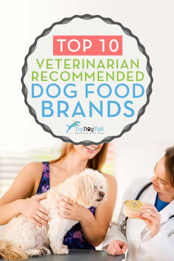 11 Vet Recommended Dog Food Brands That Are Inexpensive (11) - homemade dog food recipes vet approved