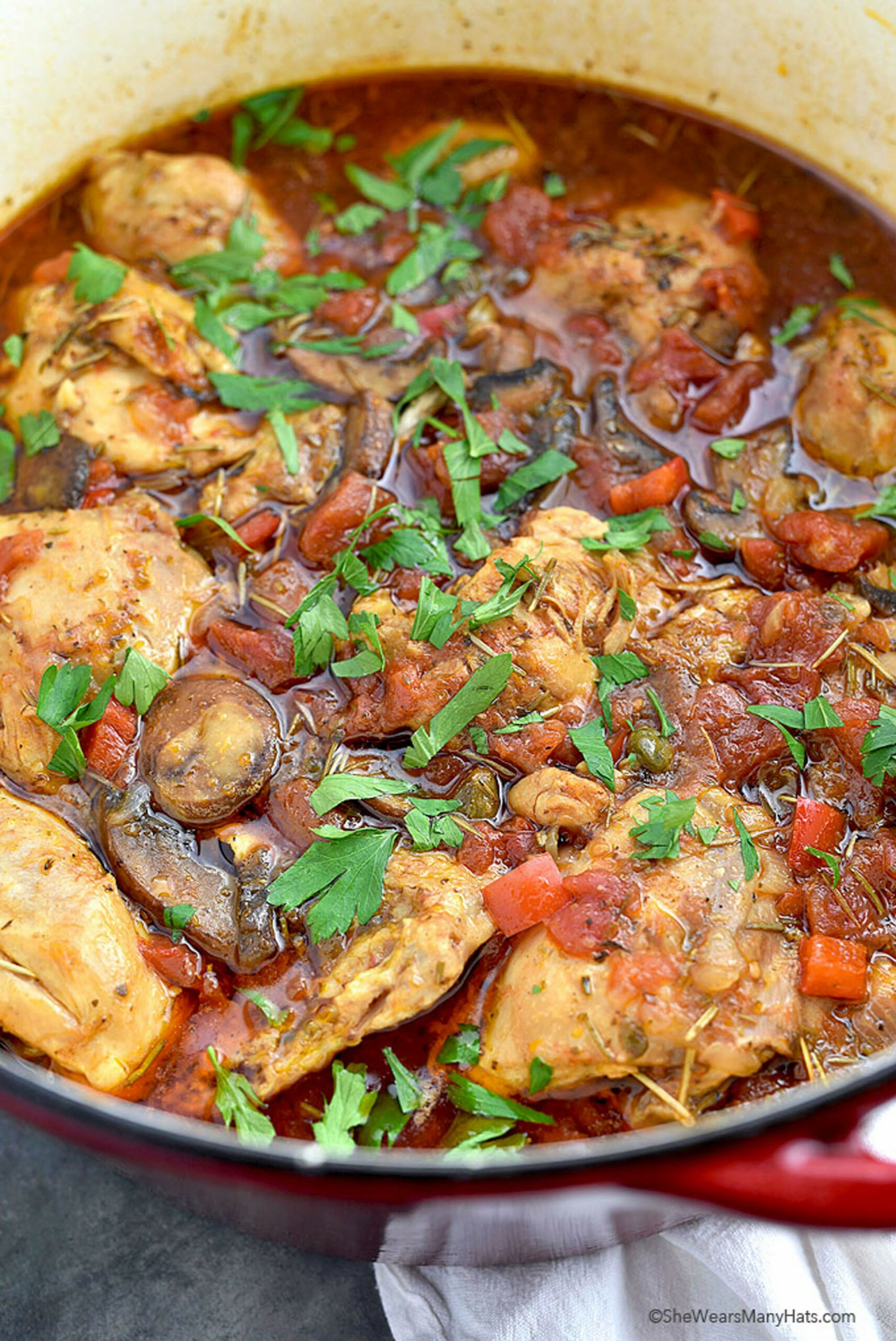 12 Delicious Dutch Oven Chicken Recipes - How to Make ..