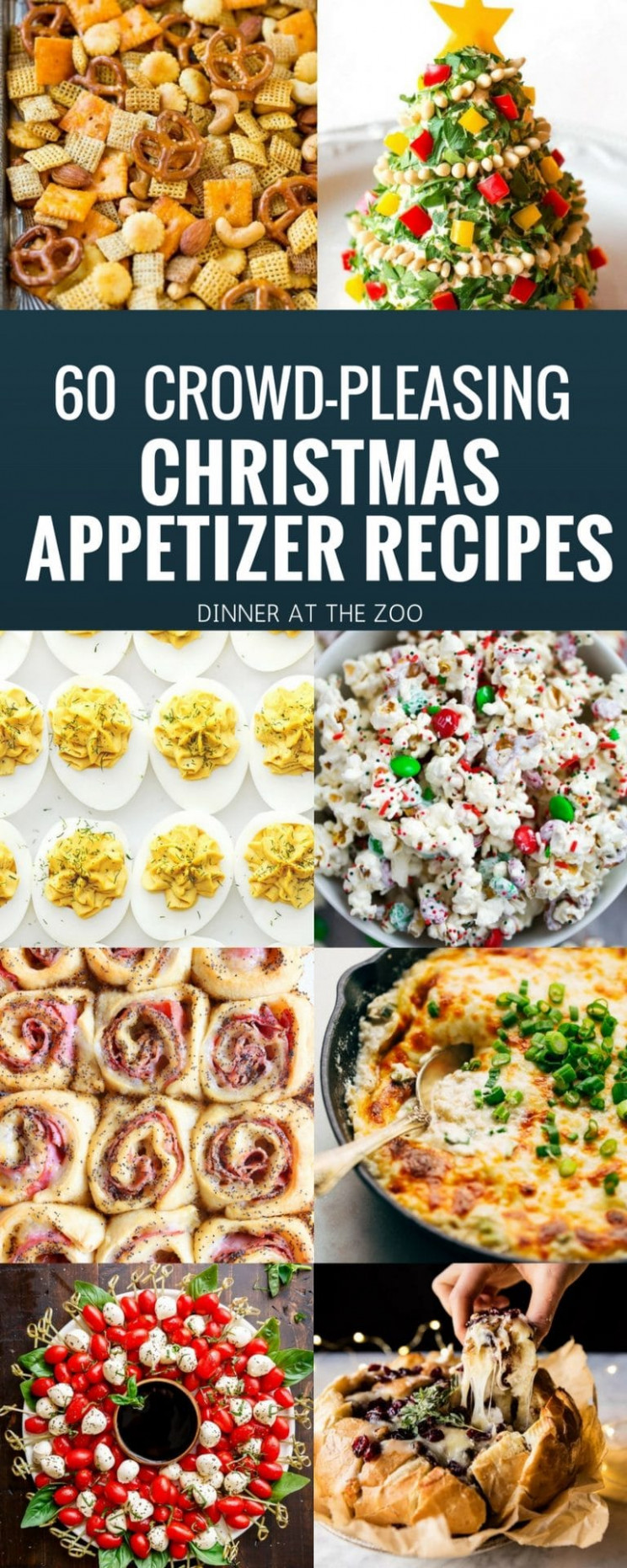 13 Christmas Appetizer Recipes - Dinner At The Zoo - Dinner At The Zoo Recipes