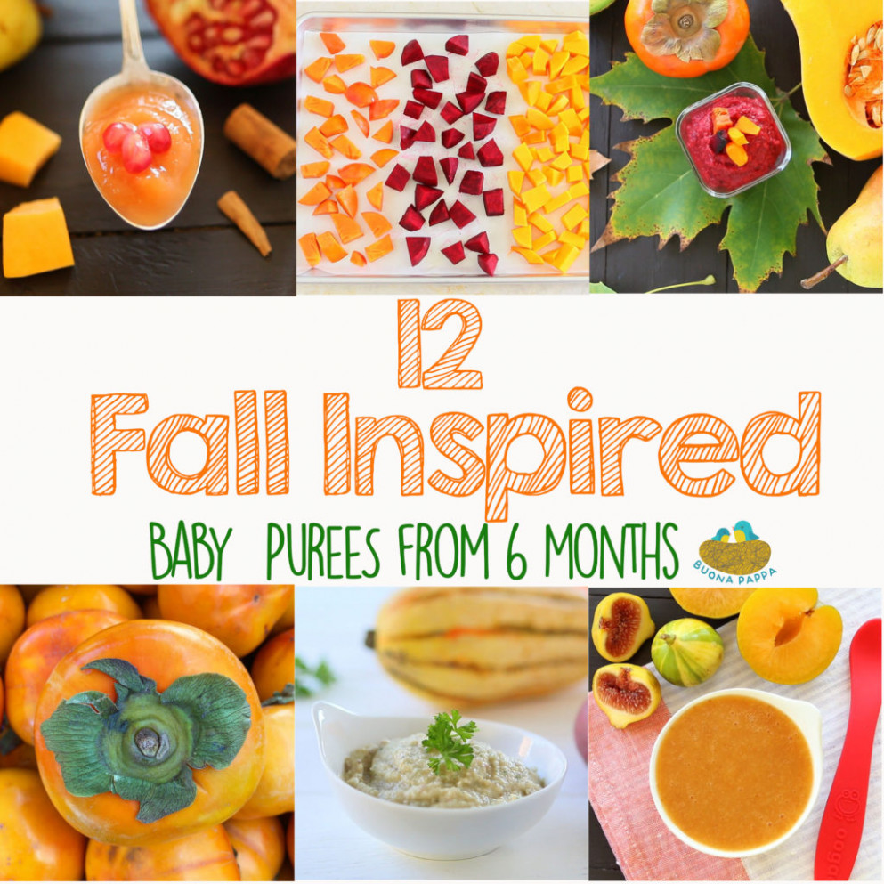 13 Fall Inspired Baby Food Recipes | Buona Pappa - baby food recipes 6 months