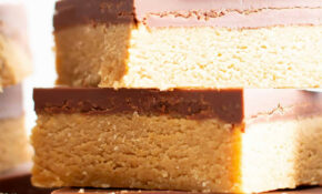 13 Ingredient Easy Vegan Chocolate Peanut Butter Bars (Gluten Free, Healthy,  Dairy Free) – Recipes Easy Desserts Healthy