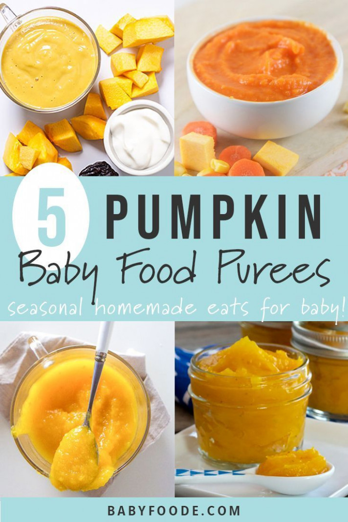 14 Pumpkin Baby Food Purees | Homemade Baby Food Ideas | Baby ..