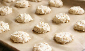 15 Ingredient Chicken And Biscuits Homemade Dog Treats – Recipes Homemade Healthy Dog Food