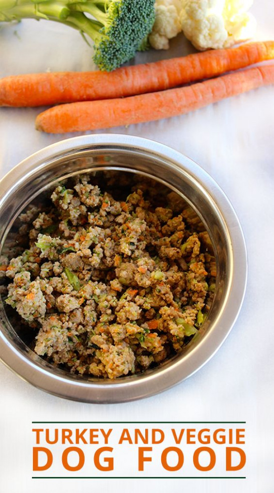 21 Healthy Homemade Dog Food and Treat Recipes Perfect for ..