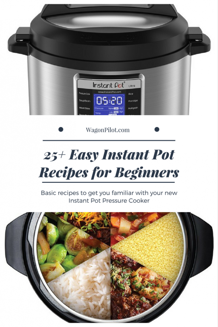 25+ Easy Instant Pot Recipes for Beginners - recipes boiled chicken
