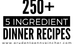 250 5 Ingredient Dinner Recipes | Leftover Meat Uses ..