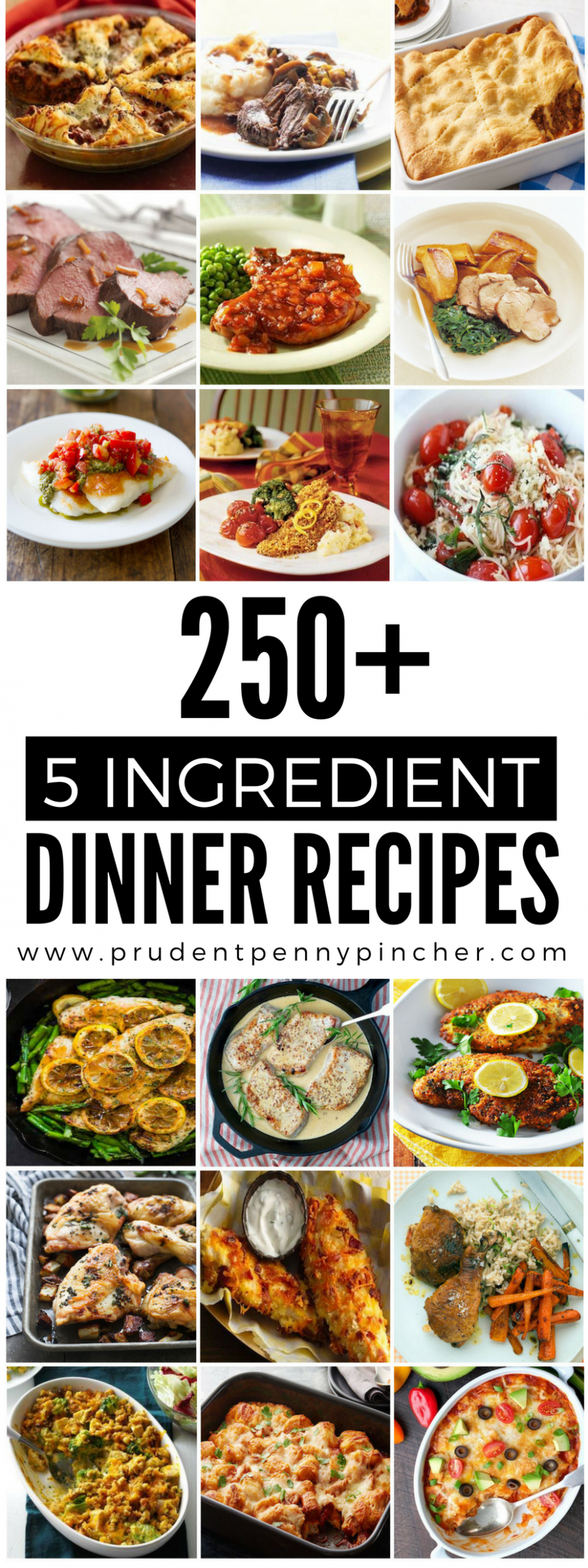 250 5-Ingredient Dinner Recipes | Leftover Meat Uses ..