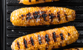 30+ Vegetarian BBQ Recipes – Grilling Ideas For A ..