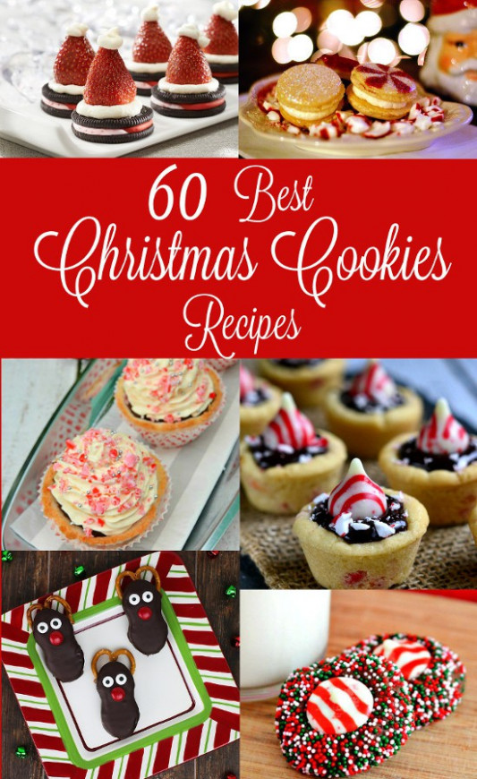 60 Best Christmas Cookies Recipes | The Gracious Wife - the best xmas food ever recipes