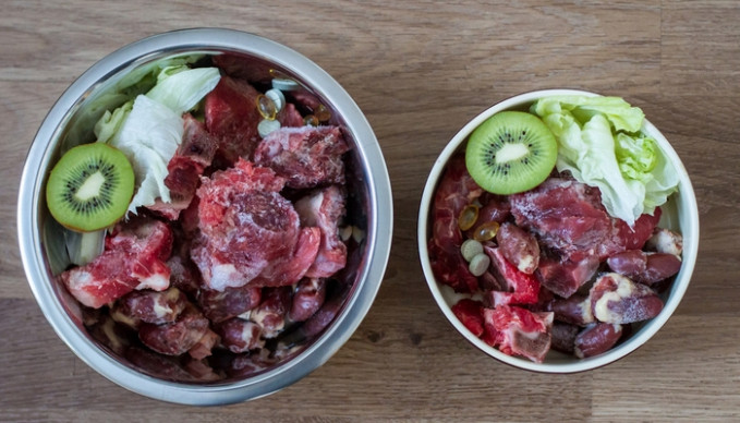 8 Reasons to Feed Your Dog Raw Food Diet Today - recipes dog raw food