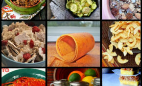 80+ Dehydrator Recipes To Preserve the Harvest | Delicious ...