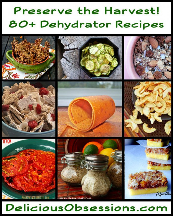 80+ Dehydrator Recipes To Preserve the Harvest | Delicious ..