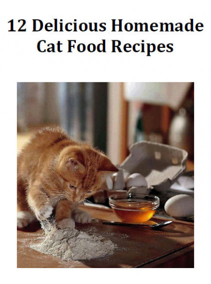 9 Foods Your Cat Should NEVER Eat! - The Purrington Post - recipes cat food