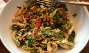 Asian Chicken And Cabbage Salad – Recipes Asian Chicken
