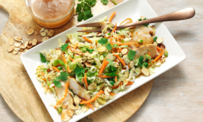 Asian Chicken Chopped Salad – Recipes Diced Chicken
