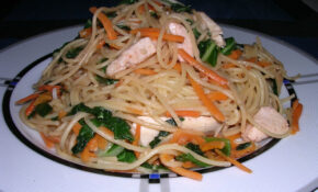 Asian Noodles With Chicken, Bok Choy And Carrot – Recipes Hoisin Sauce Chicken