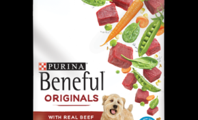 Beneful Originals Dry Dog Food with Beef