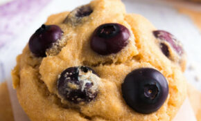 Best Healthy Blueberry Muffin Recipe – Recipes Muffins Healthy