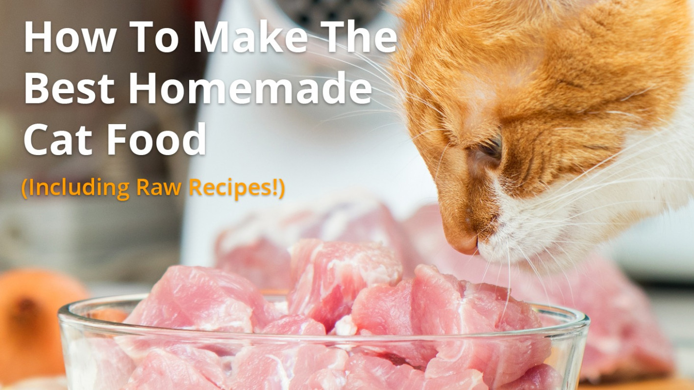 Best Homemade Cat Food Recipes | Raw or Cooked, Make Your Own! - homemade cat food recipes