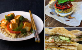 Bloggers Share Their Favorite Vegetarian Recipes – Recipes Vegetarian Favorite