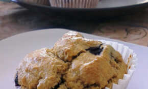 Blueberry Muffins  GF, DF And Sugar Free – Recipes Breakfast Muffins Healthy