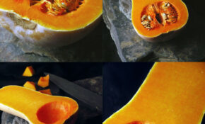 Butternut Squash – Autumn Recipes Vegetarian