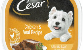 Cesar Classics Adult Wet Dog Food 13.13 Oz Poultry Trays