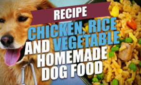 Chicken, Rice And Vegetable Homemade Dog Food Recipe – Dog Food Recipes Chicken
