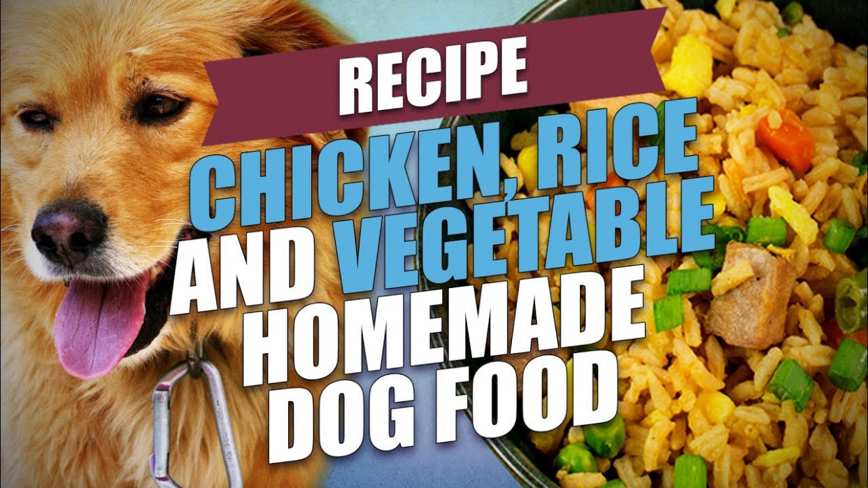 Chicken, Rice and Vegetable Homemade Dog Food Recipe - dog food recipes chicken