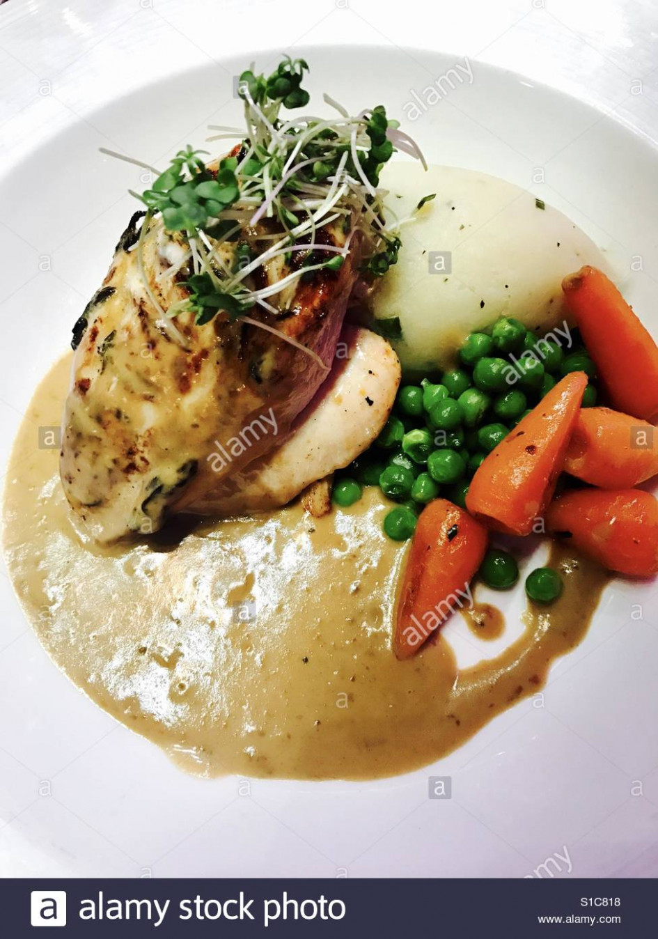 Chicken with mashed potato, vegetables and gravy Stock Photo ..