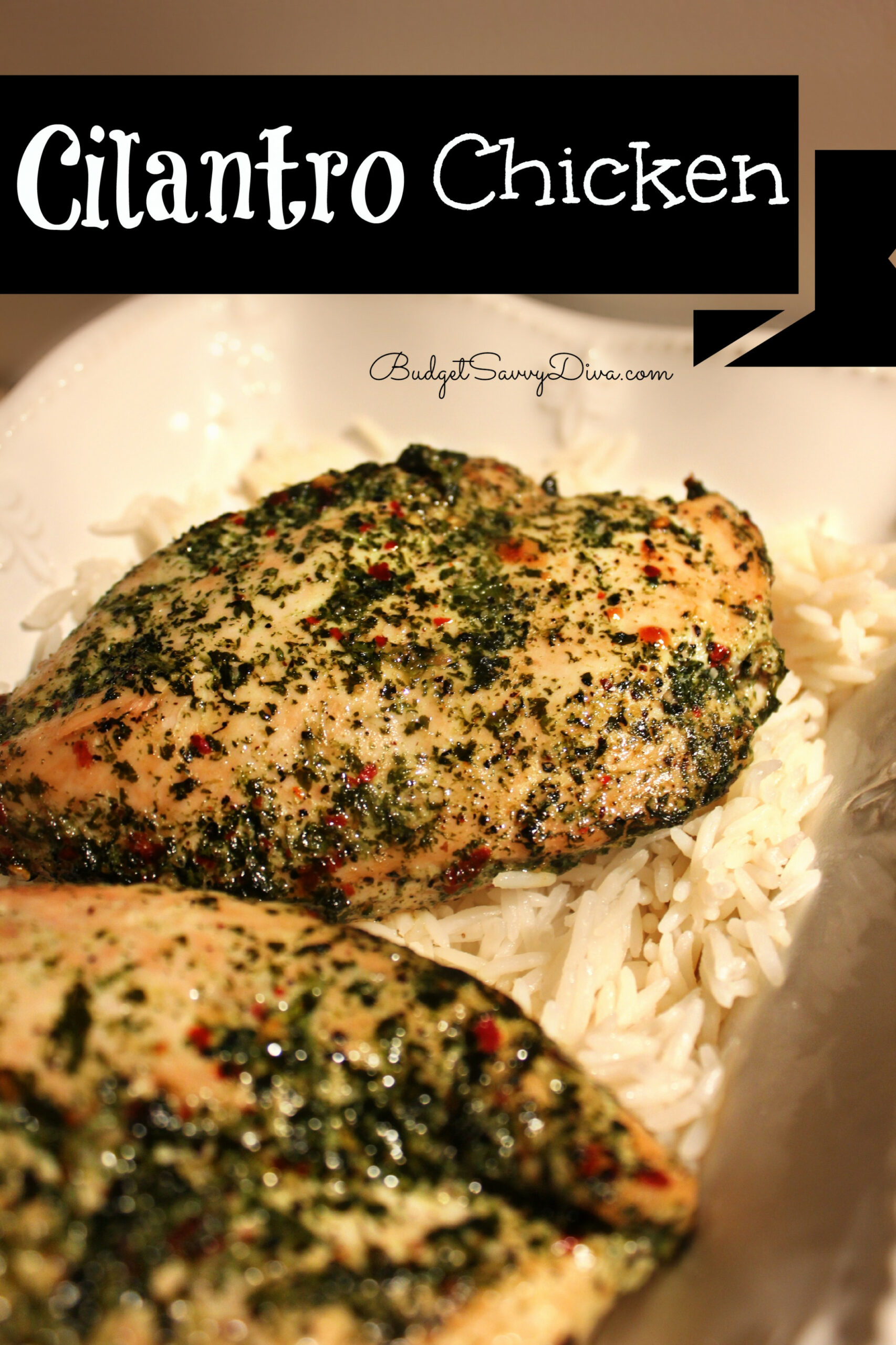 Cilantro Chicken Recipe - Budget Savvy Diva - chicken recipes cheap