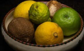 Citrus fruit bowl