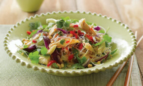 Coriander And Chicken Vermicelli Salad – Nadia Lim Recipes Chicken
