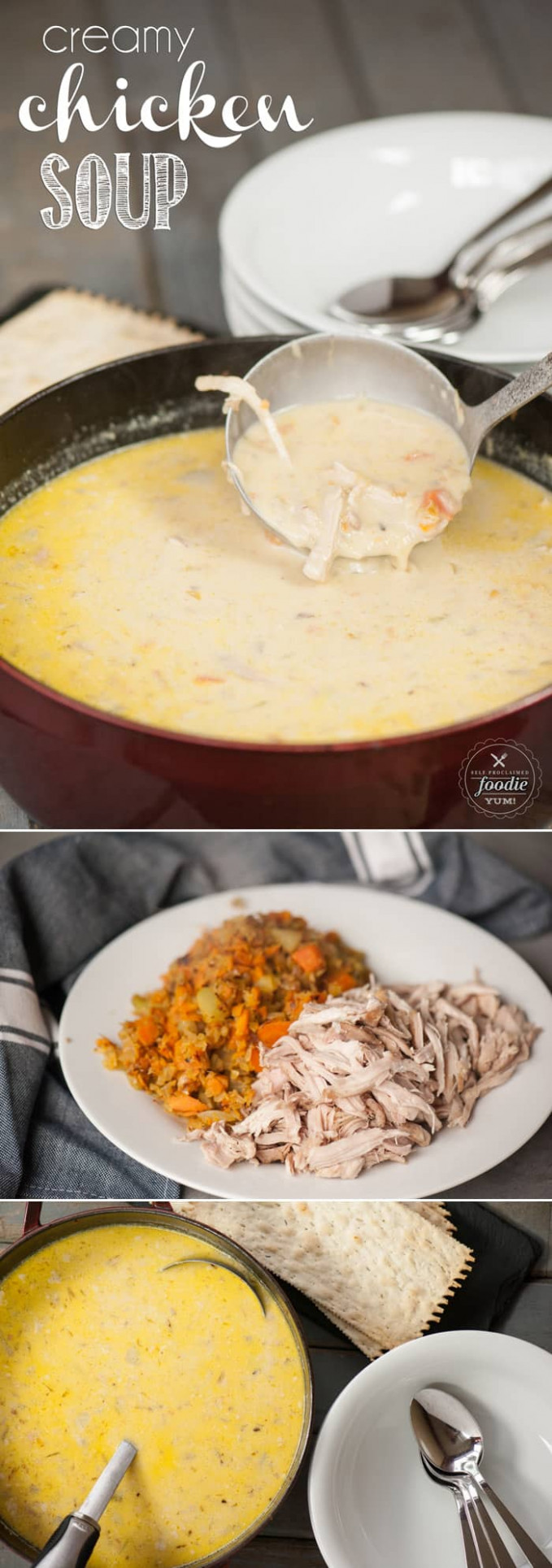 Creamy Chicken Soup Recipe | Self Proclaimed Foodie - recipes cream of chicken soup