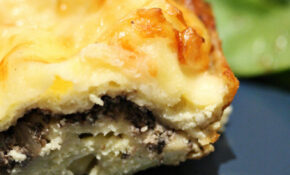 Creamy Mushroom Lasagna – Recipes For Vegetarian Lasagna