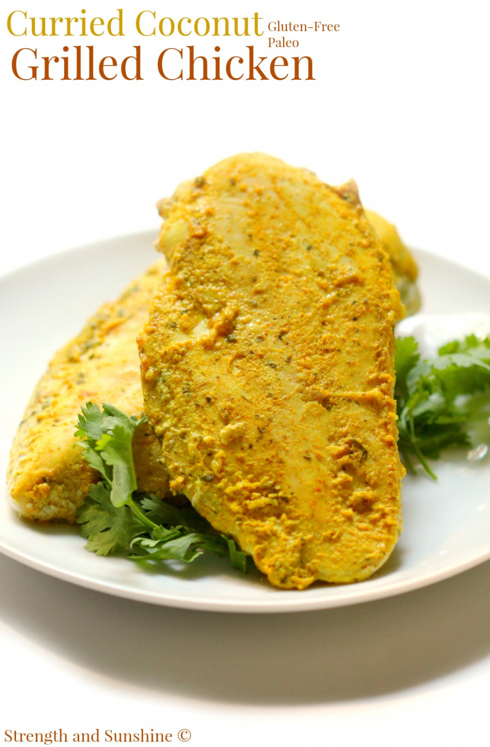 Curried Coconut Grilled Chicken - george foreman recipes chicken