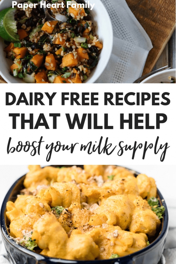 Dairy Free Breastfeeding Diet- Recipes For Moms Nursing ..
