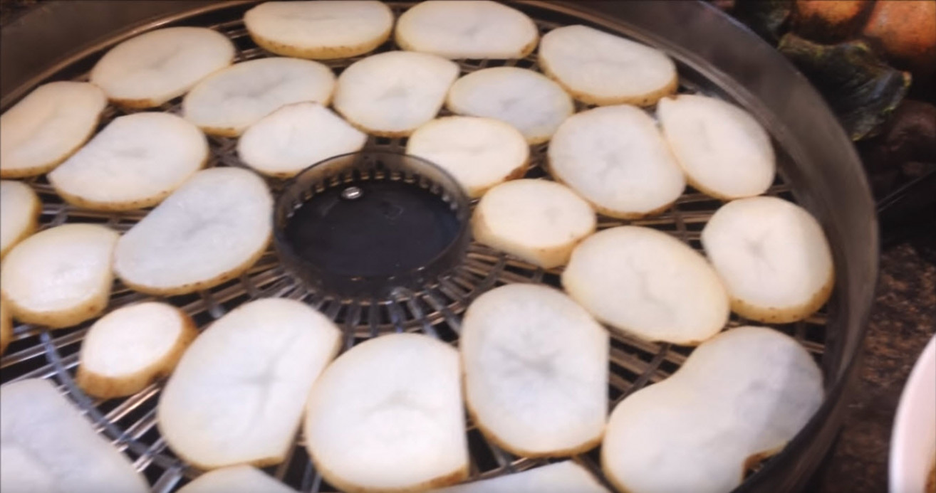 Dehydrated Potato Chips Recipe - food dehydrator recipes