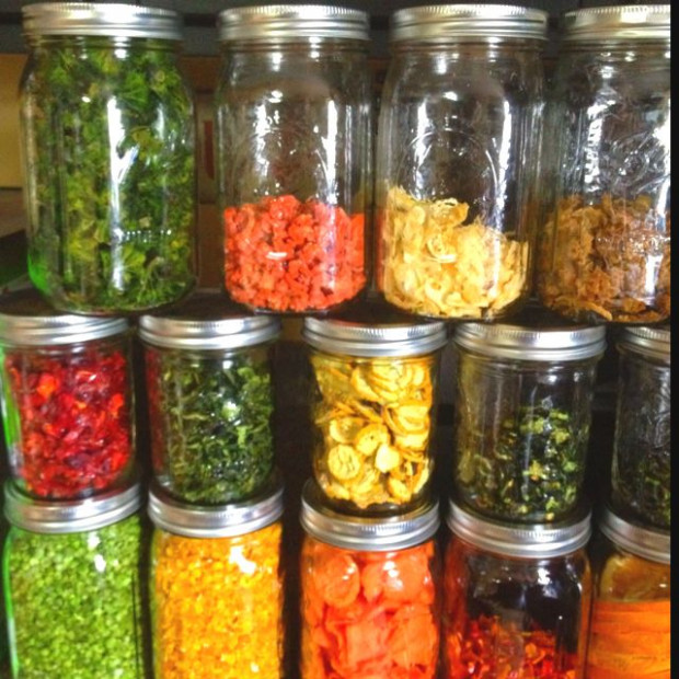 Dehydrated vegetables and fruits!! //// Just got a ..