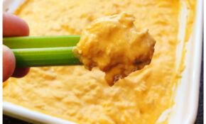 Delicious Low Carb Buffalo Chicken Dip – Atkins Recipes Chicken