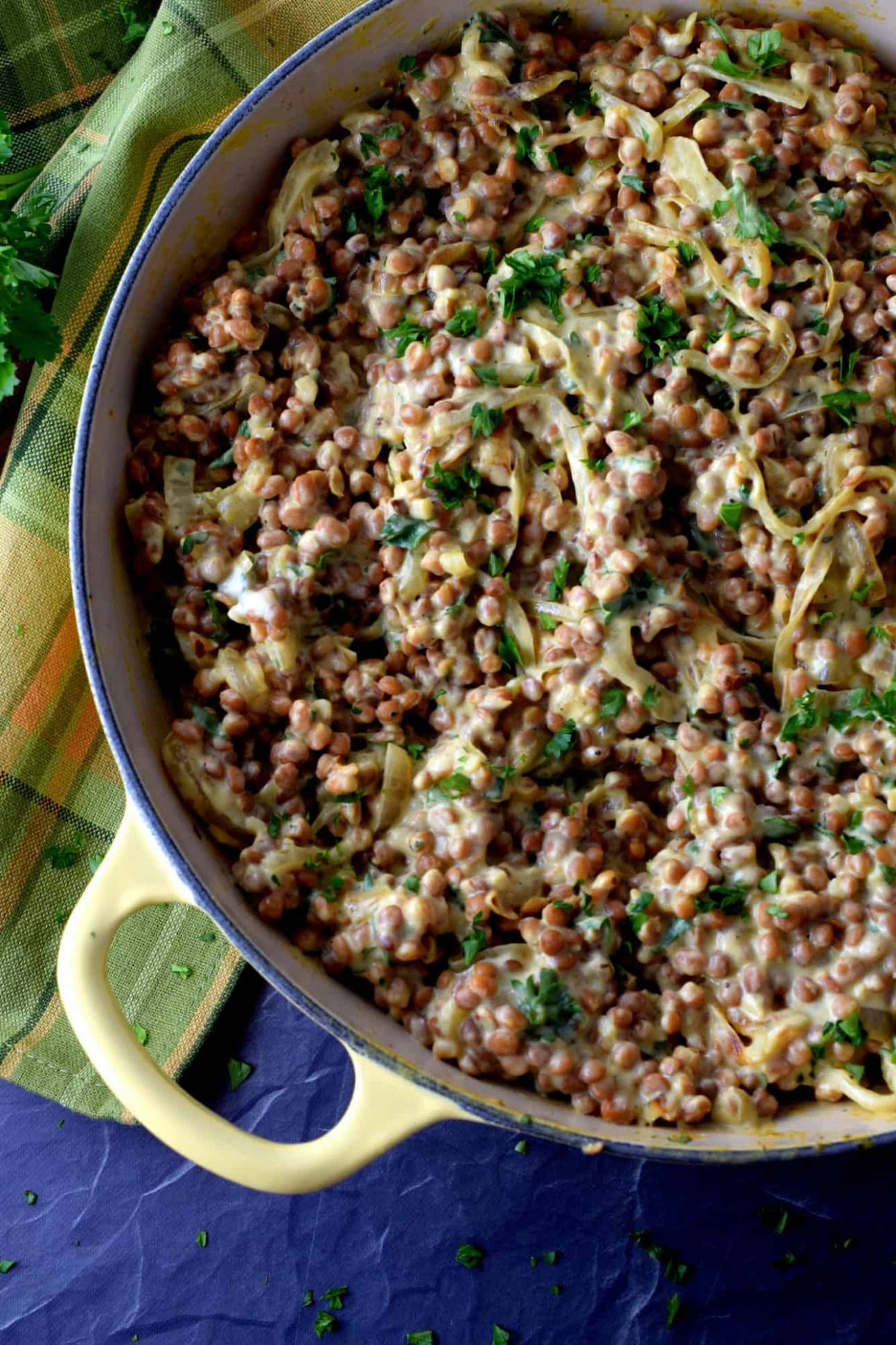 Dijon Spiced Creamy Lentils and Caramelized Onions - recipes puy lentils vegetarian