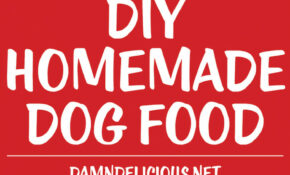 DIY Homemade Dog Food – Recipes Dog Food