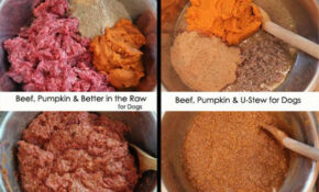 Dog Food Recipes – Know Better Pet Food – Recipes Homemade Cat Food