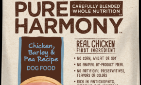 Dogs | Pure Harmony – Dog Food Recipes With Chicken