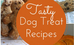 Easy & Delicious Homemade Dog Treat Recipes – Recipes To Make Hypoallergenic Dog Food