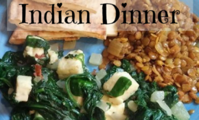 Easy Vegetarian Indian Dinner – Raising Fairies And Knights – Quick Dinner Recipes Indian Vegetarian