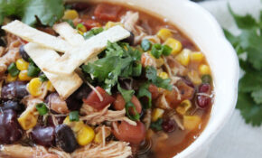 Easy Zero Points Chicken Taco Soup – Weight Loss Recipes Chicken