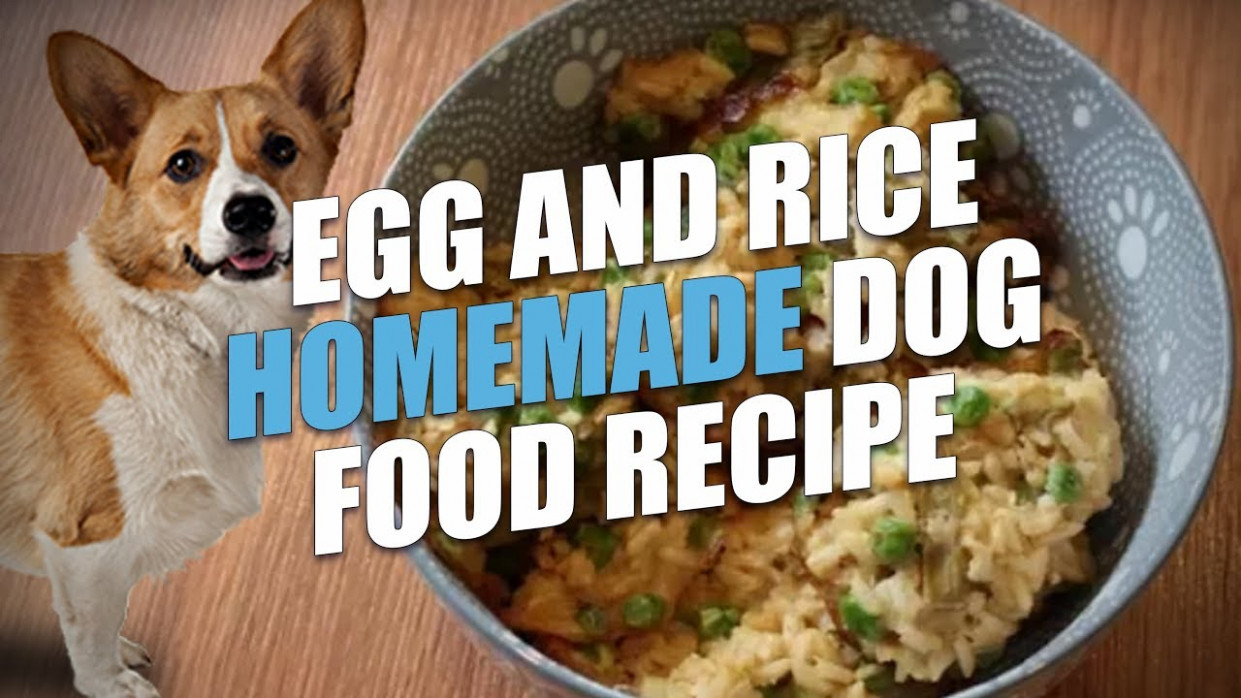 Egg and Rice Homemade Dog Food Recipe (Cheap and Healthy) - recipes dog food