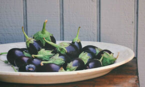 Eggplants – Eggplant Recipes Vegetarian